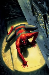 Spectacular Spider-Man Deluxe by Marvel - Deluxe Box Canvas sized 25x38 inches. Available from Whitewall Galleries